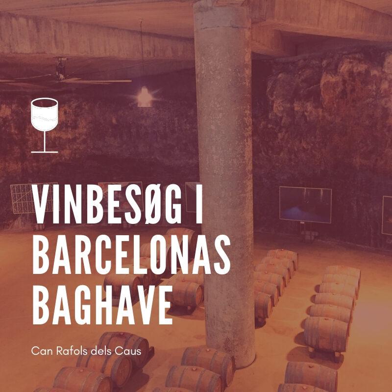 vinbesøg i barcelona